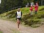 Rennsteiglauf 2012 - Halbmarathon