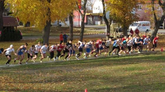 gemeinsamer Start männliche und weibliche Jugend sowie Frauen und Seniorinnen über 4 Kilometer
