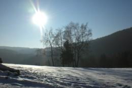 Perspektivwechsel: Von Skier kann man gewohnte Laufrunden neu erleben