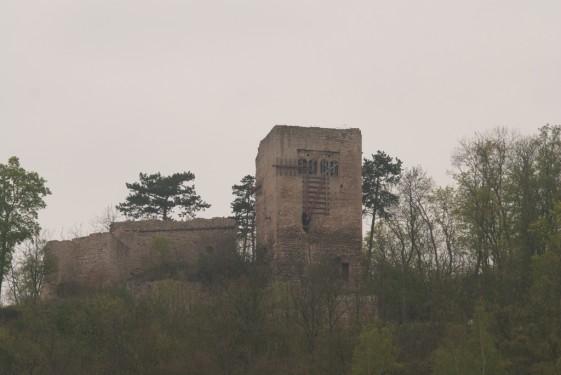 Blick auf die Lobdeburg bei Jena