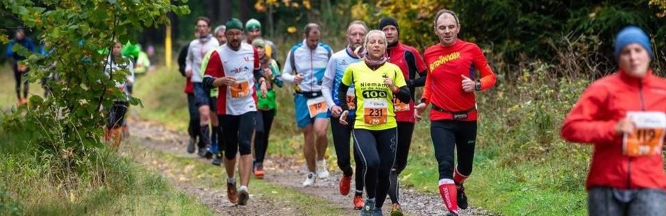 29. Rennsteig-Herbstlauf: Bergläufer Krieghoff siegt auf der Langstrecke