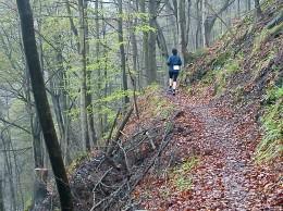Schöne Trails sind keine Seltenheit beim Ultra