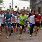Thüringer Läufer des Jahres 2017: Die Wahl beginnt