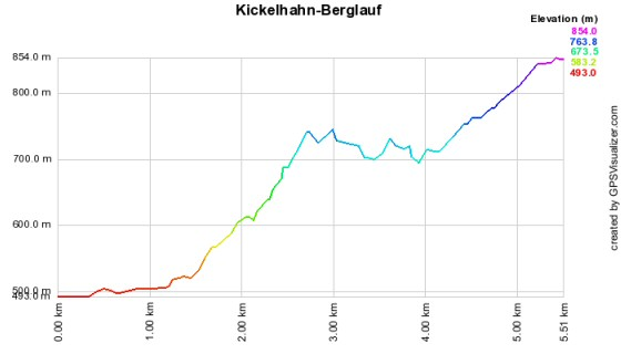 Höhenprofil vom Kickelhahn-Berglauf