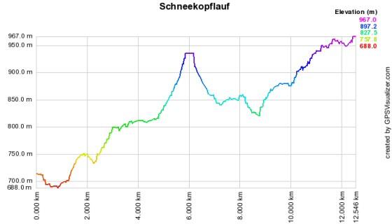 Höhenprofil vom Schneekopflauf - 12,75 km